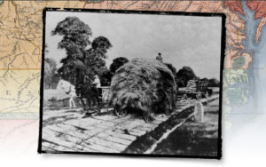 Hay wagon on a plank road