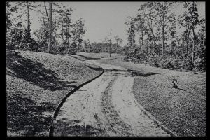 Frederick Law Olmsted's macadam approach road to Biltmore Estate