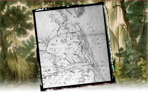 A map of the Great Dismal Swamp