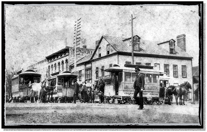 Horse Trolleys on the streets of Charlotte, North Carolina