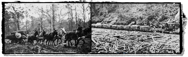 Logging by mule team and by railroad