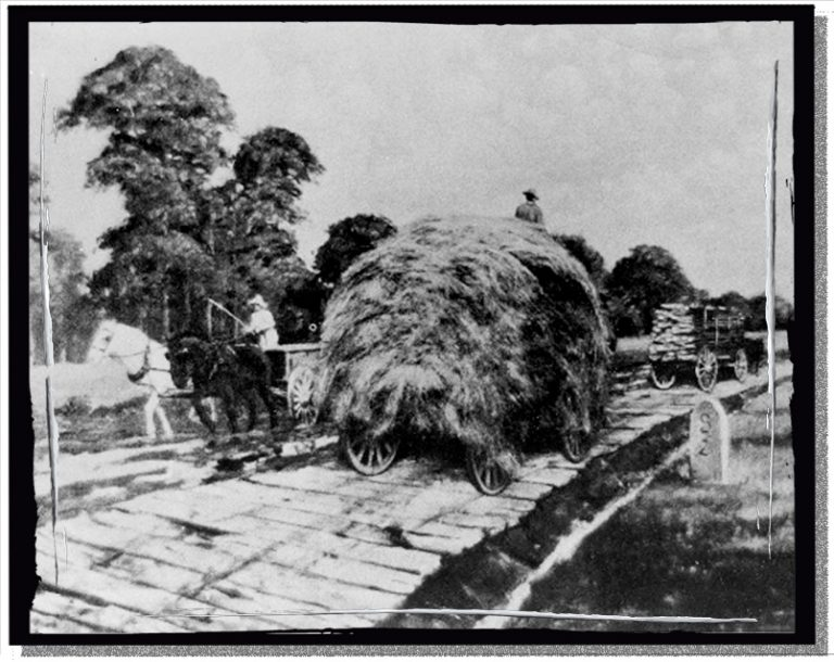 A hay wagon on the Fayetteville & Western Turnpike, the world's longest plank road.