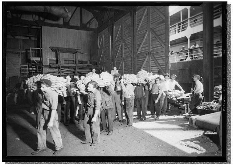 Stevedores unloading bananas from a cargo ship