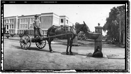 A horse watering station on a Wilmington street