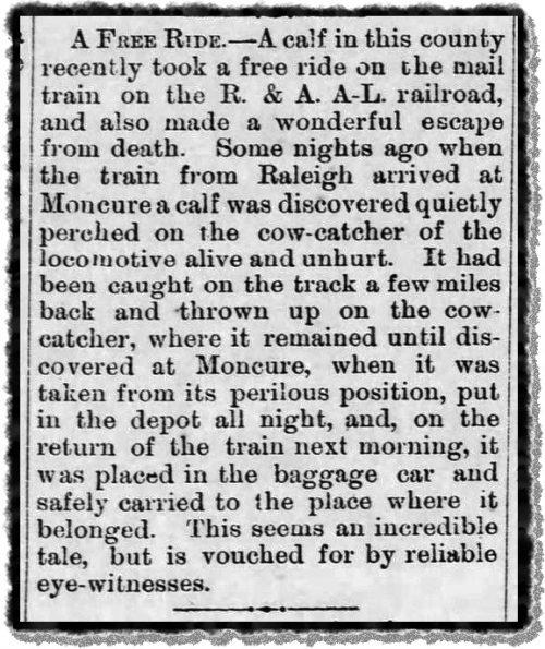 An 1885 newspaper clipping about a cowcatcher